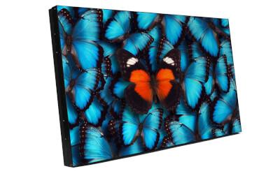 LVD5521B-packshot jpg.jpg